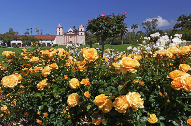 SANTA BARBARA MISSION GARDENS STUNNING ROSE GARDENS ACROSS FROM SANTA BARBARA MISSION (FEE MAY APPLY IF HAVING MANY GUESTS AND ARCH SET UP, OTHERWISE NO FEE)