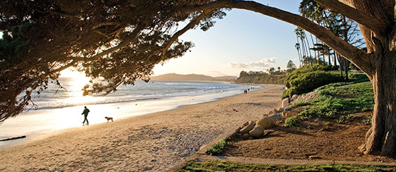 BUTTERFLY BEACH OFFERS TWO DISTINCT BACKDROPS