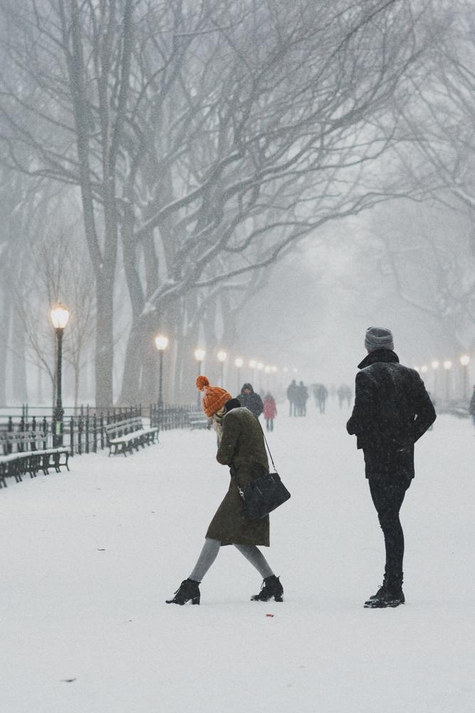 central-park_couple_snow-800wi.jpg