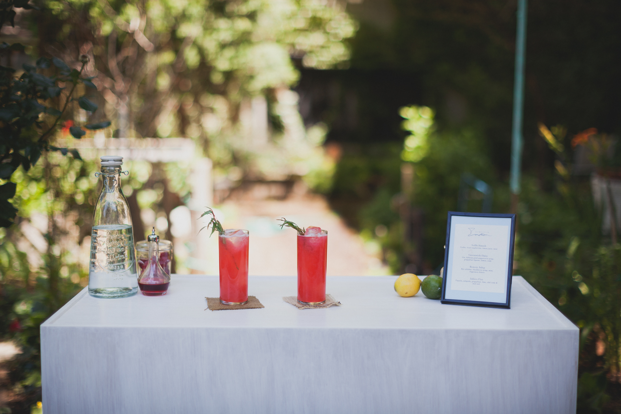 cocktails_in_motion_-071.jpg