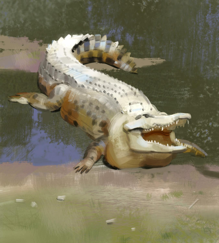 croc_-_Yihyoung_Li.jpg