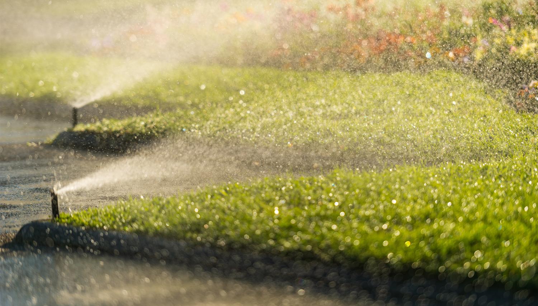 lawn sprinklers -