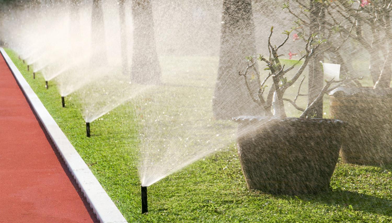 drainage -