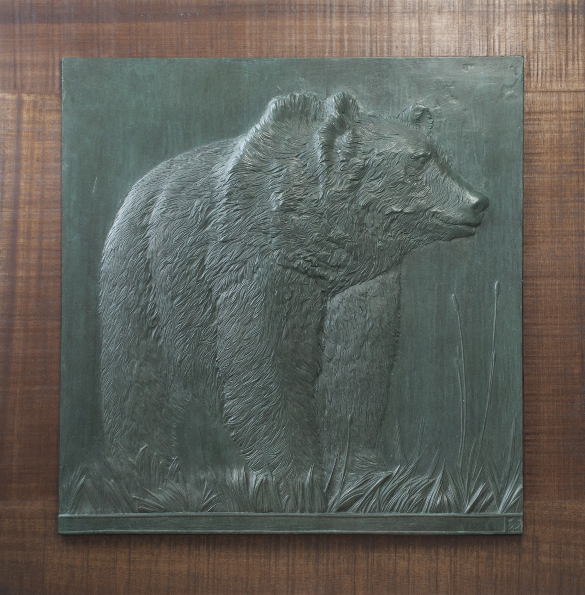 American Grizzly copy.jpg