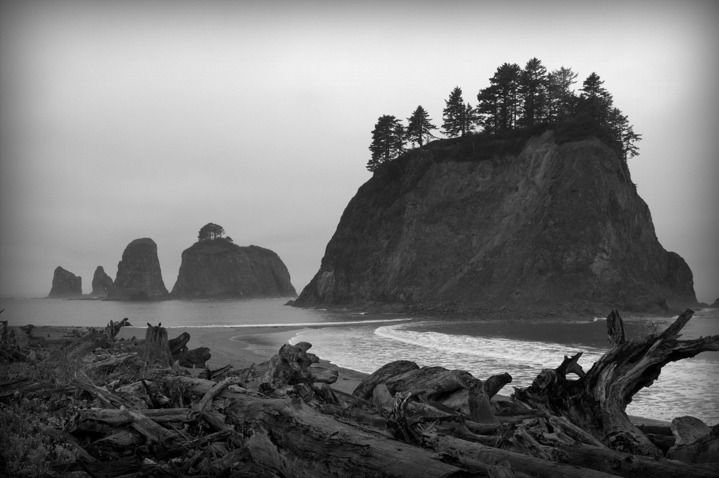 coast oregon.jpg