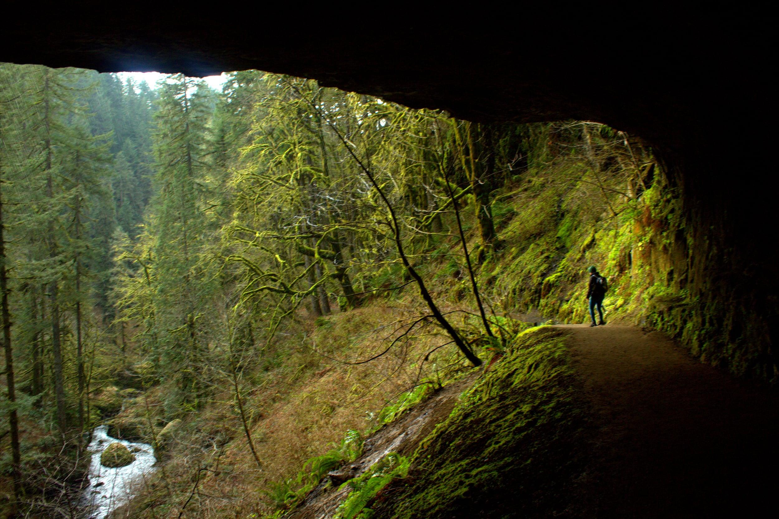 Wild Spirit Adventure Group Retreat Trip in Nature