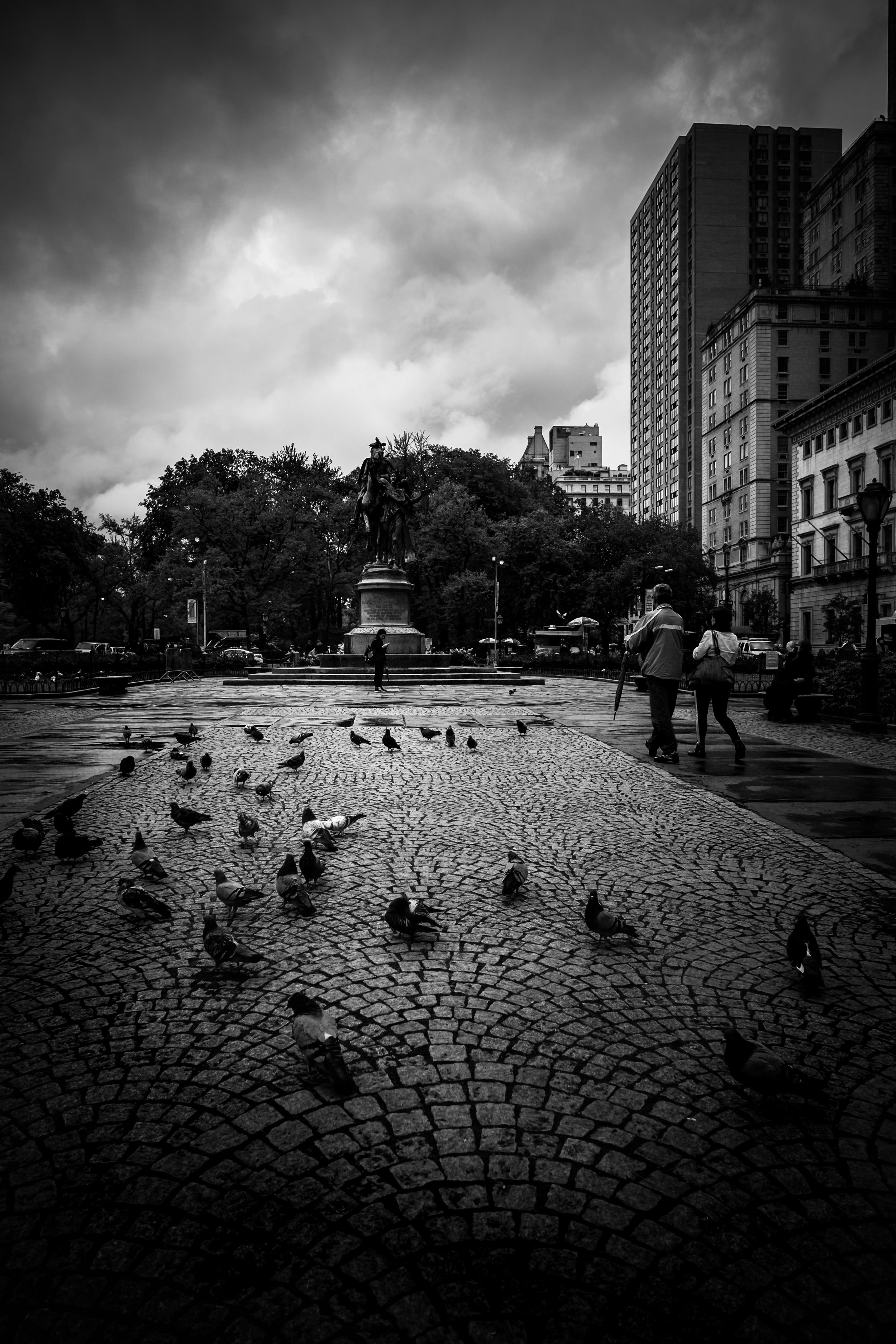 NYC Rain XVI
