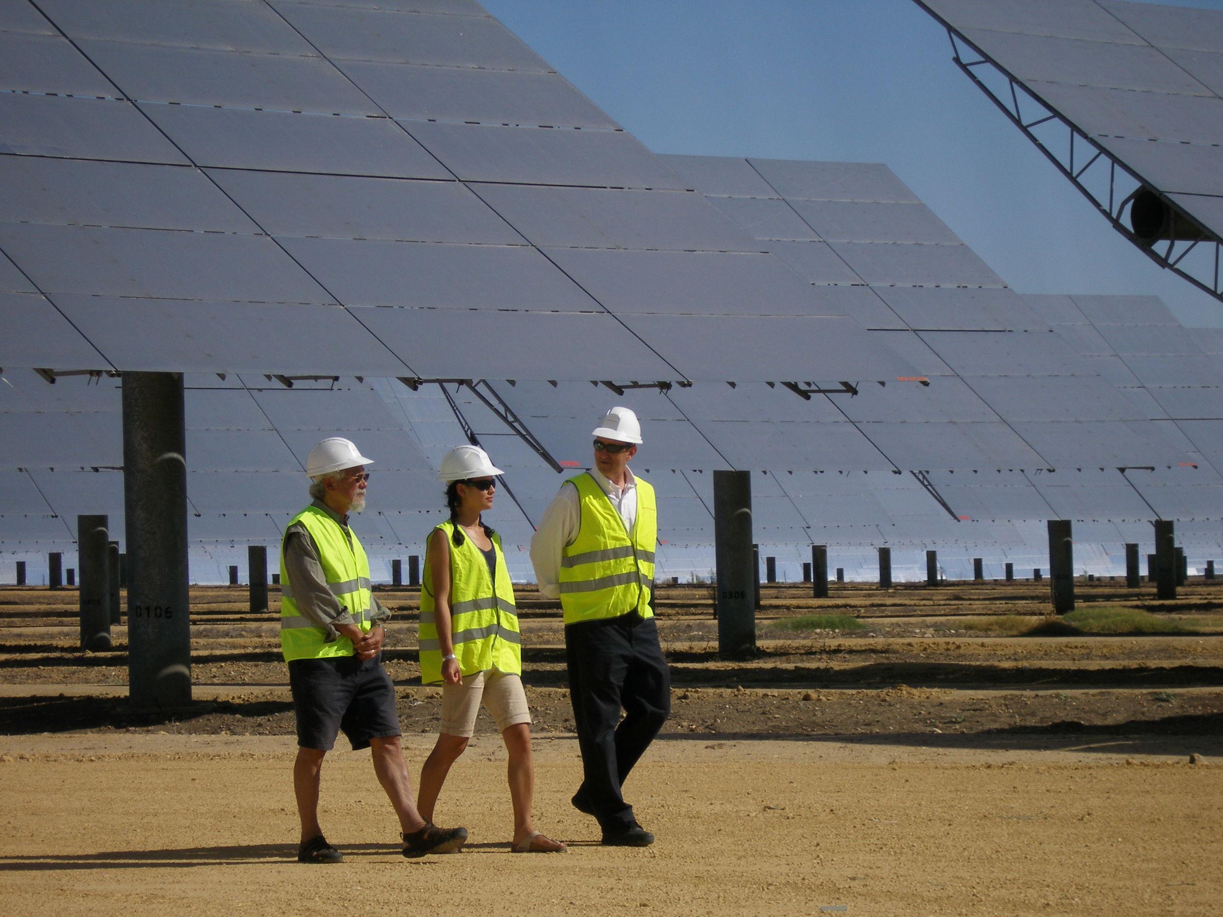 David Suzuki Solar