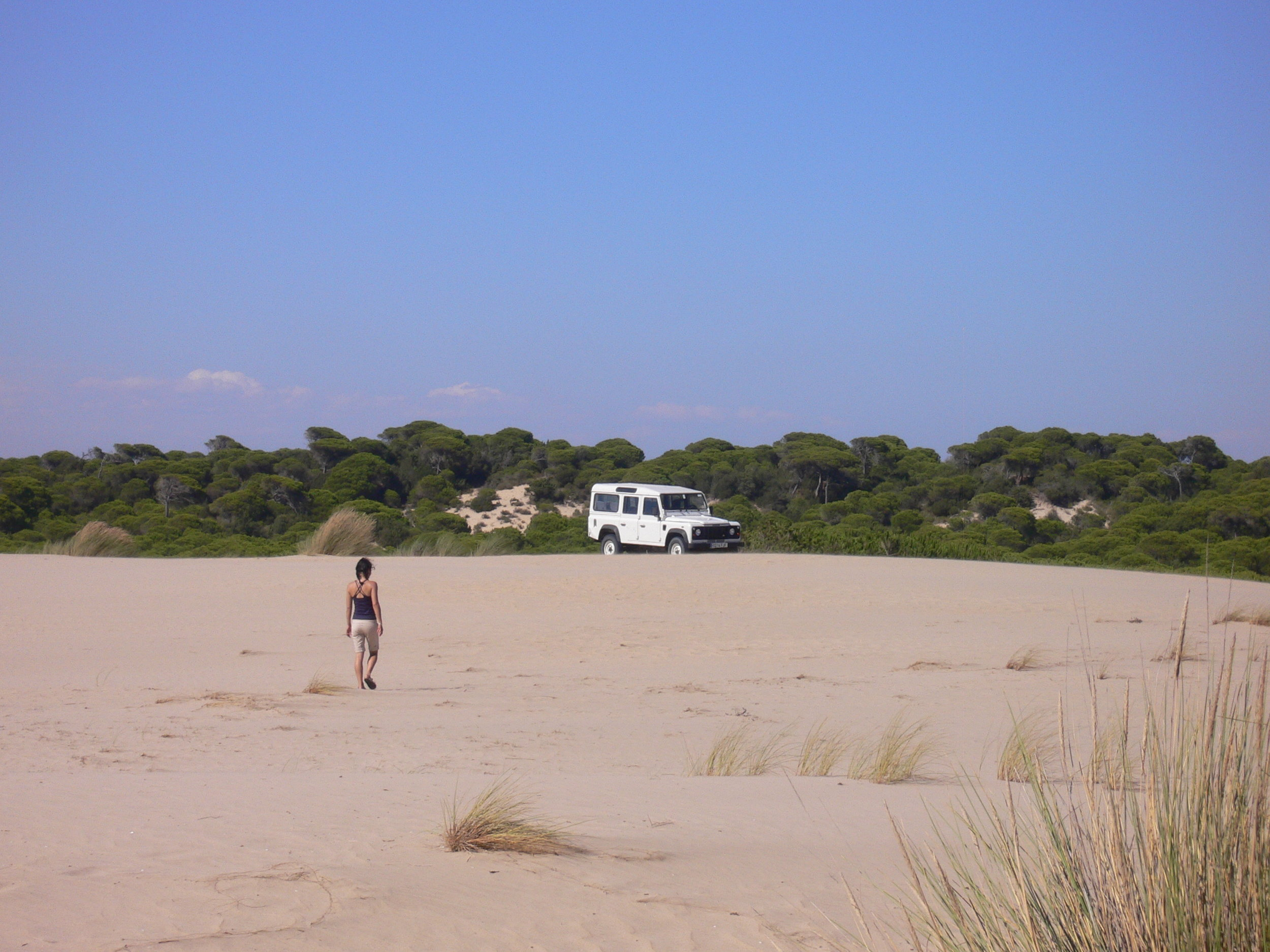 Sarika at Parque Nacional de Donana .JPG