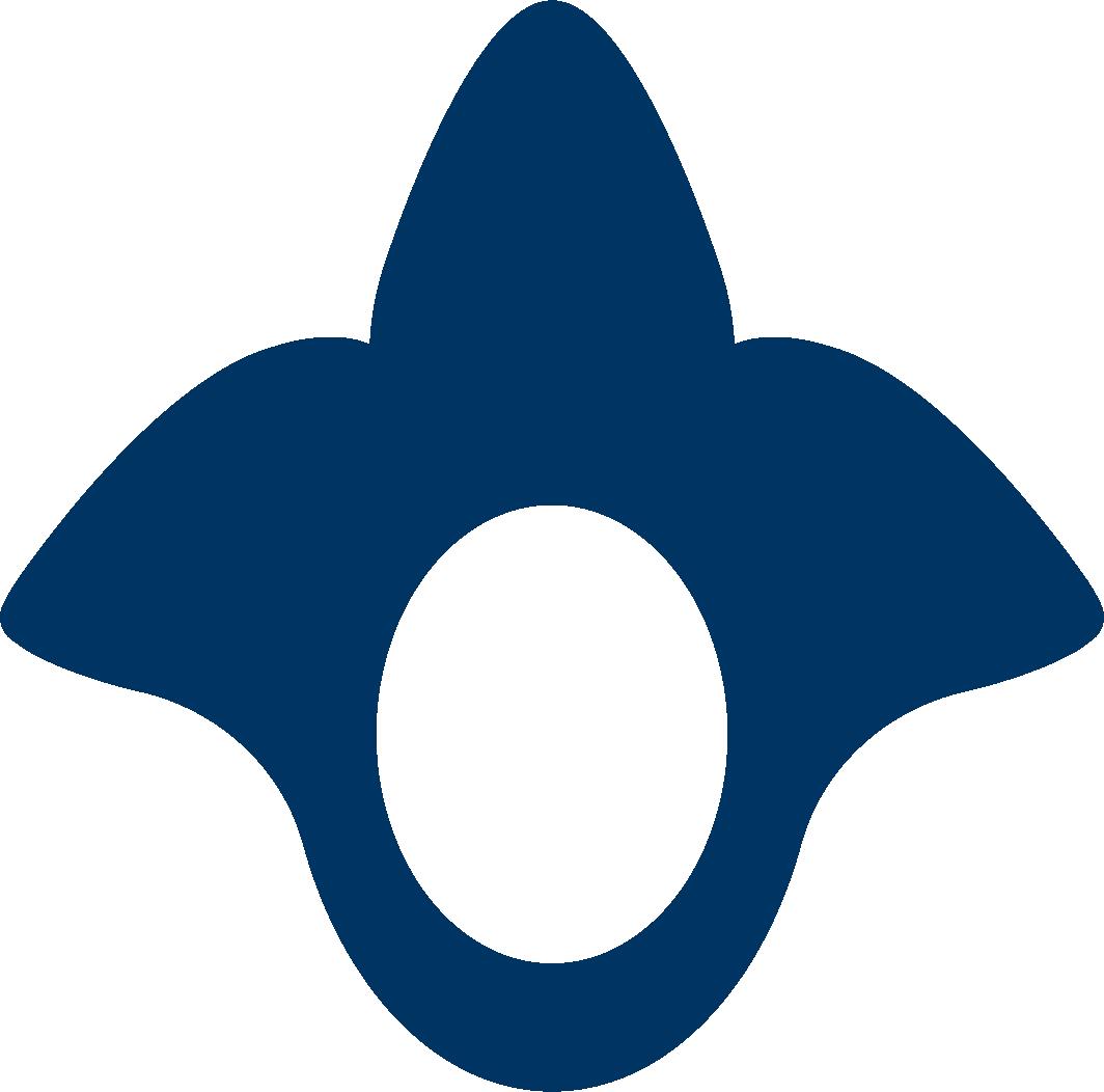 Viska_logo.png