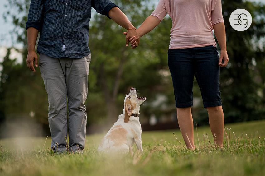 engagement photo with dog cute funny edmonton photographers wedding