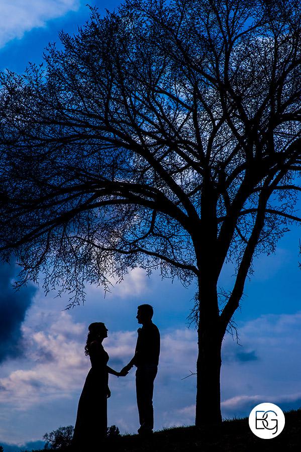 Edmonton valley zoo wedding silhouette spring blu