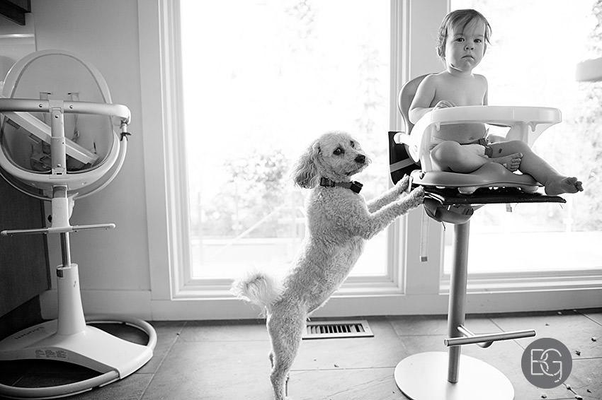 Edmonton_family_photographers_twins_baby_photos02.jpg