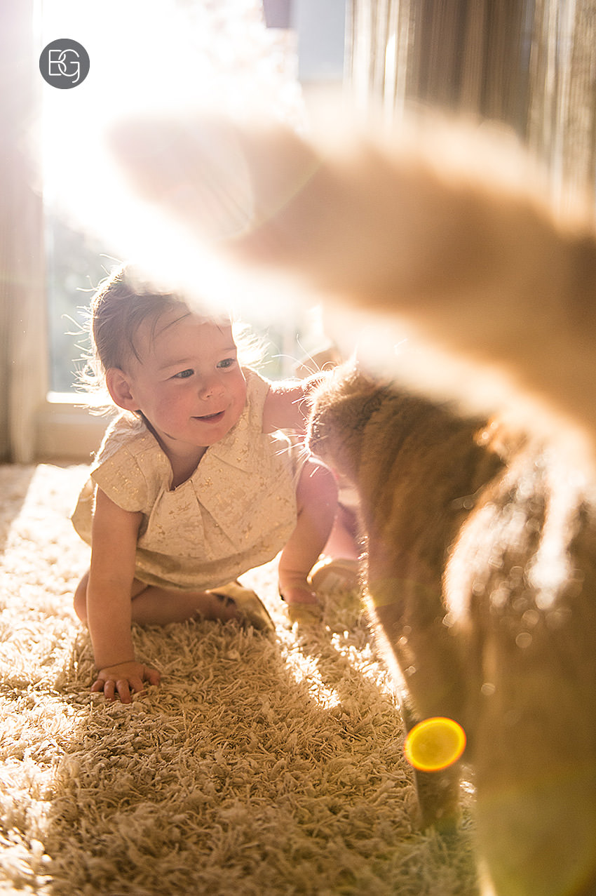 baby and cat edmonton family and pet photographers
