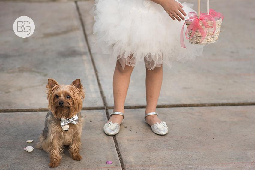Edmonton_wedding_photographers_angela_wandy_51.jpg