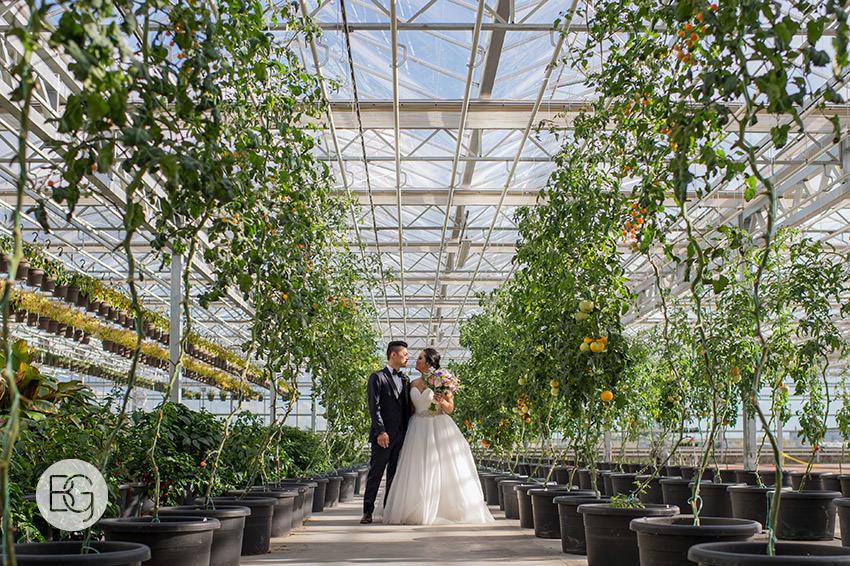 Edmonton_wedding_photographers_angela_wandy_52.jpg