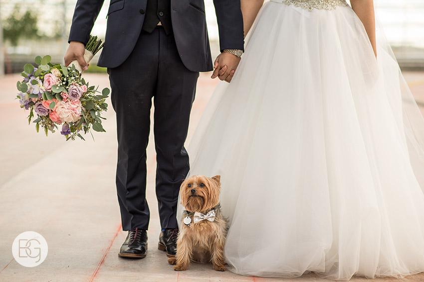 Edmonton_wedding_photographers_angela_wandy_48.jpg