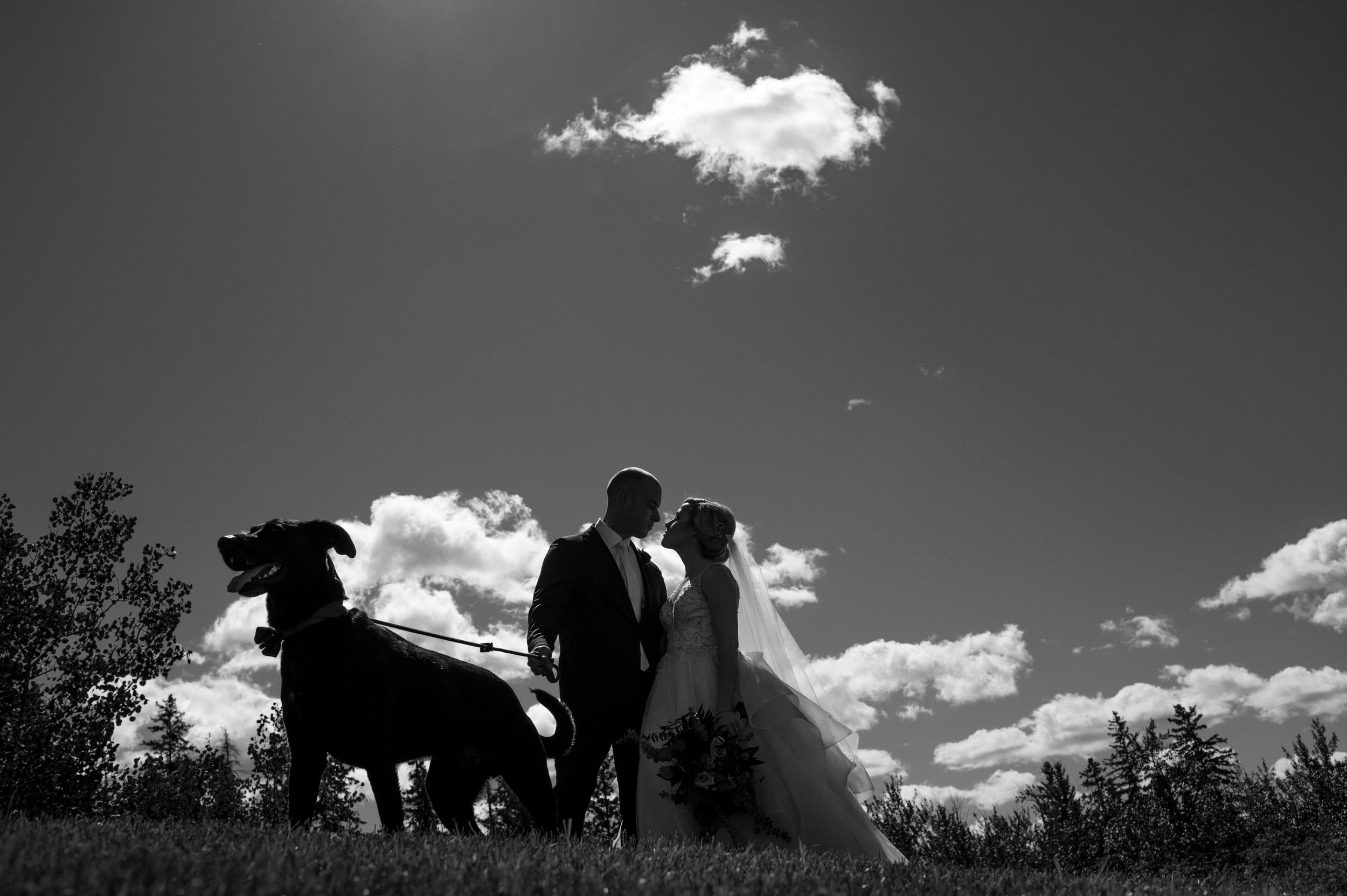 Robyn_Shaun_Edmonton_shaw_conference_center_wedding_01.JPG