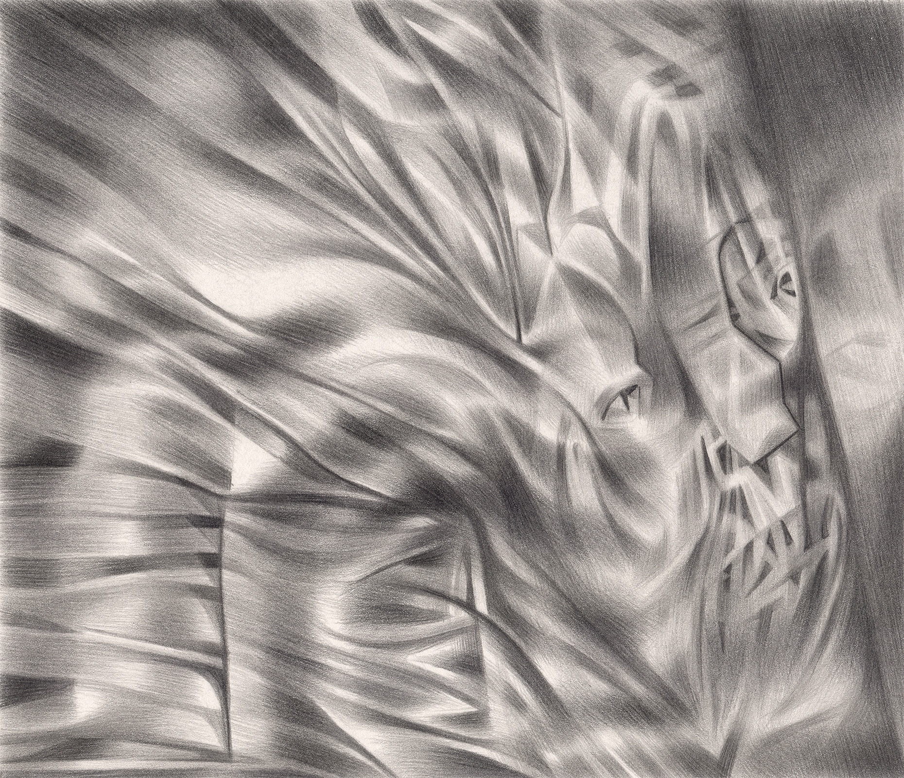 "The Anger Effect , 2004. Graphite on paper. 7"" x 6""."