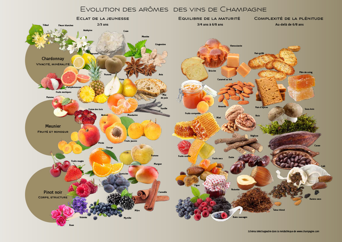 http://www.champagne.fr