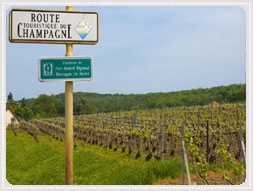 Tips för resa på egen hand/ Semester i Champagne