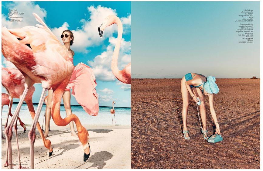 Vogue Flamingo 4.JPG