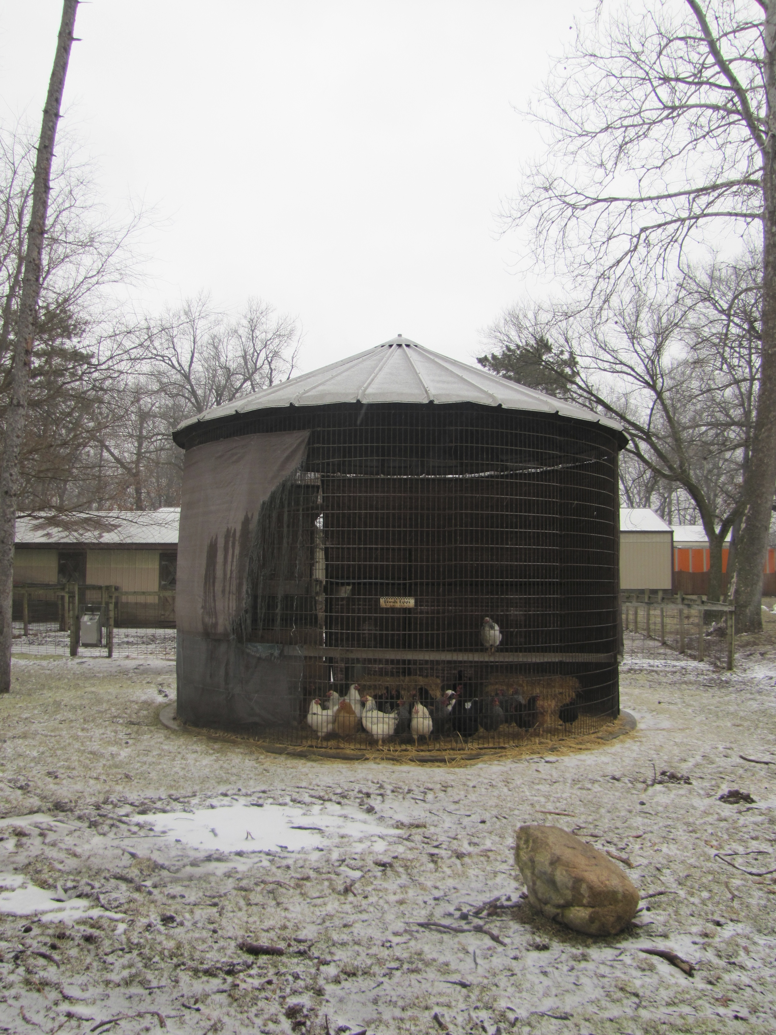 Chicken Coup Camp Tecumseh
