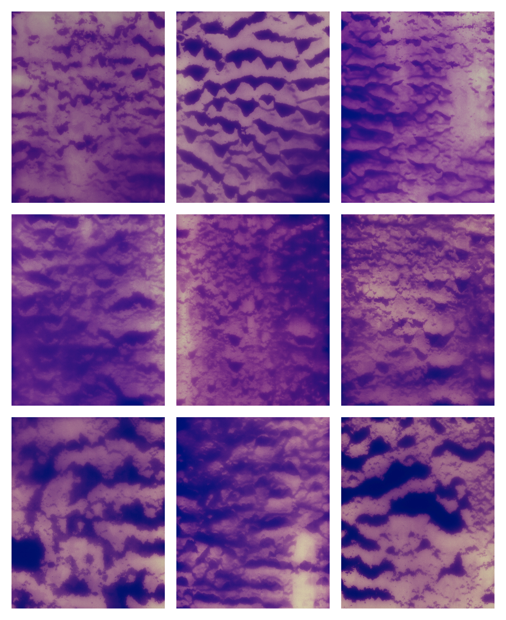 Chiswick II, 2019 (giclée photogram made from nine negatives)