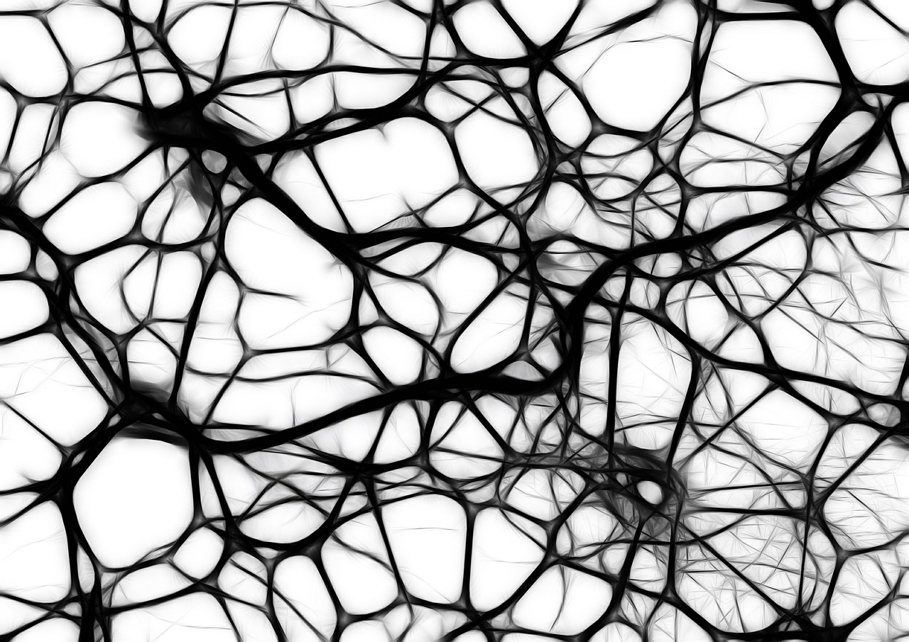 Neurons - it's important to take care of these little guys following a concussion!