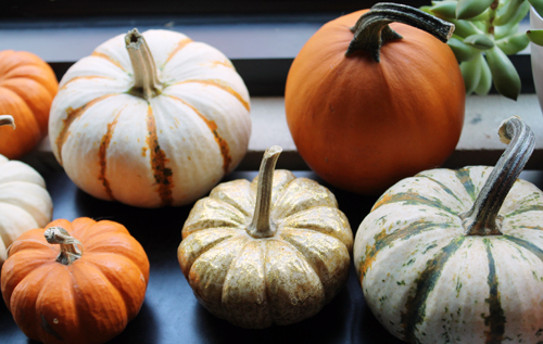 October-Pumpkins.jpg