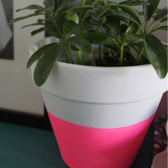 Neon-Painted Planter