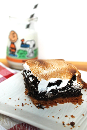 Smores Brownies 1.jpg