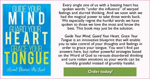 Guide Your Mind, Guard Your Heart, Grace Your Tongue  - $15.99