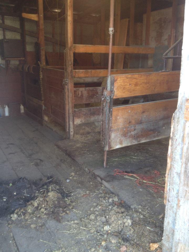 before barn looking south west.jpg