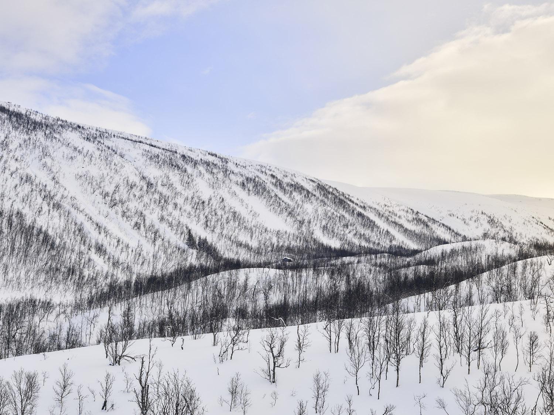 Tromsø_22_MJP.jpg