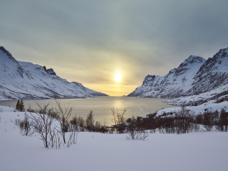 fjord tromsø