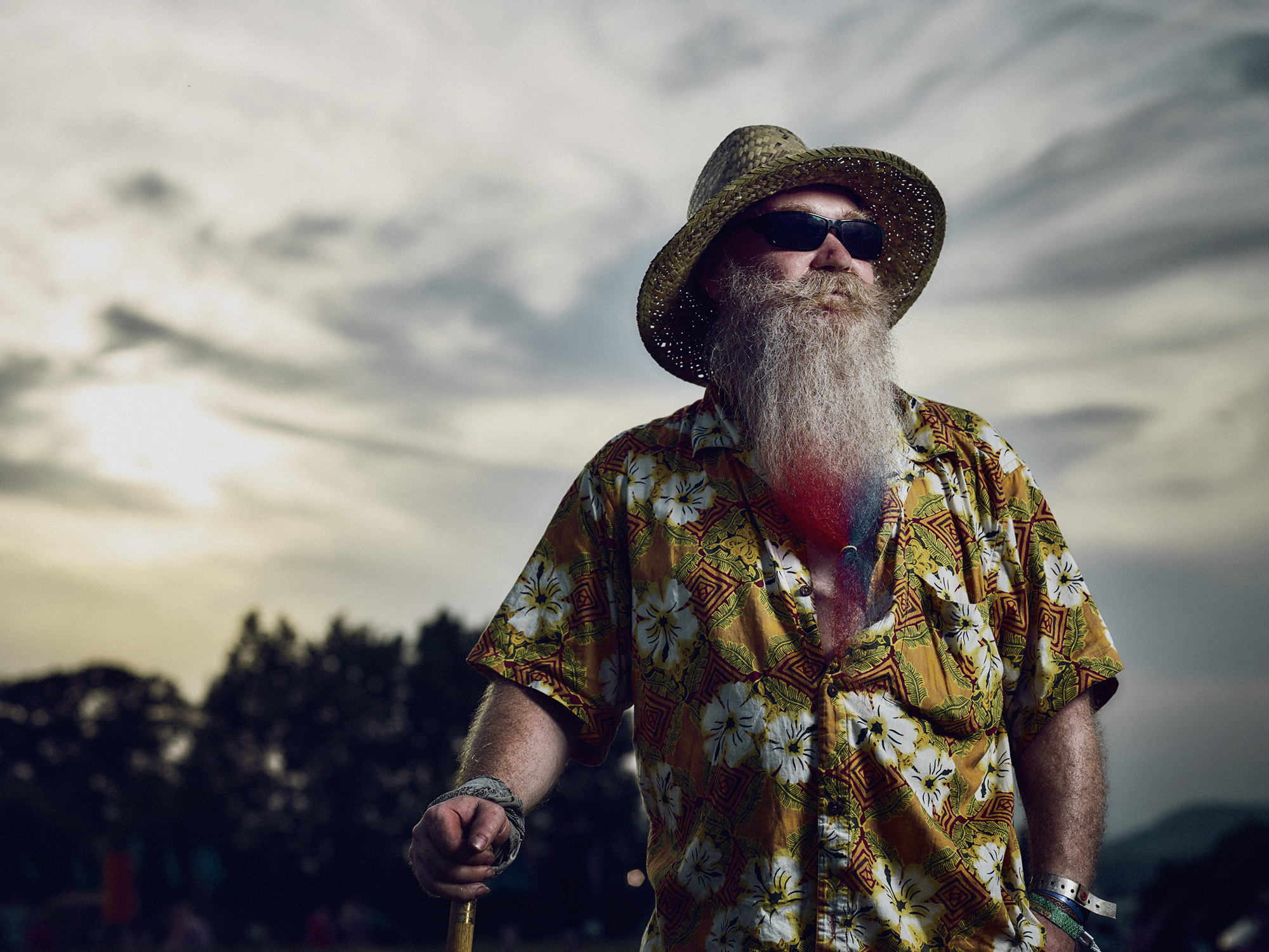 Steve- beard enthusiast & music lover