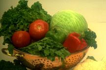 salad-veggies-294038-resized-600