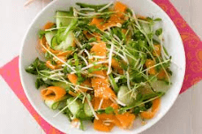carrotsalad2-resized-229.png