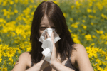 allergyseason.png