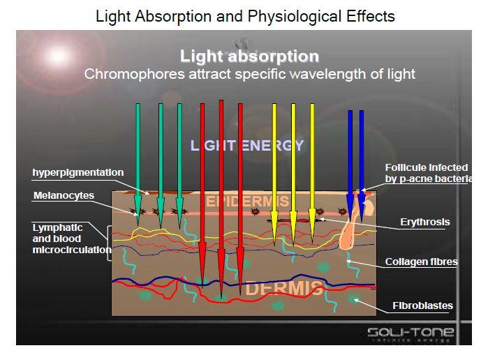 LED Diagram.JPG