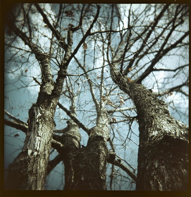 I just got a #holgapinholewide and I couldn't be more stoked about it...this shot is from 2015 using my normal #holga120 on #portra160 pulled to 100.  #believeinfilm #filmphotography #filmphotographic #photofilmy #staybrokeshootfilm #kodak #filmcommunity #filmisnotdead #analogtalkpodcast #franklintn #nashville