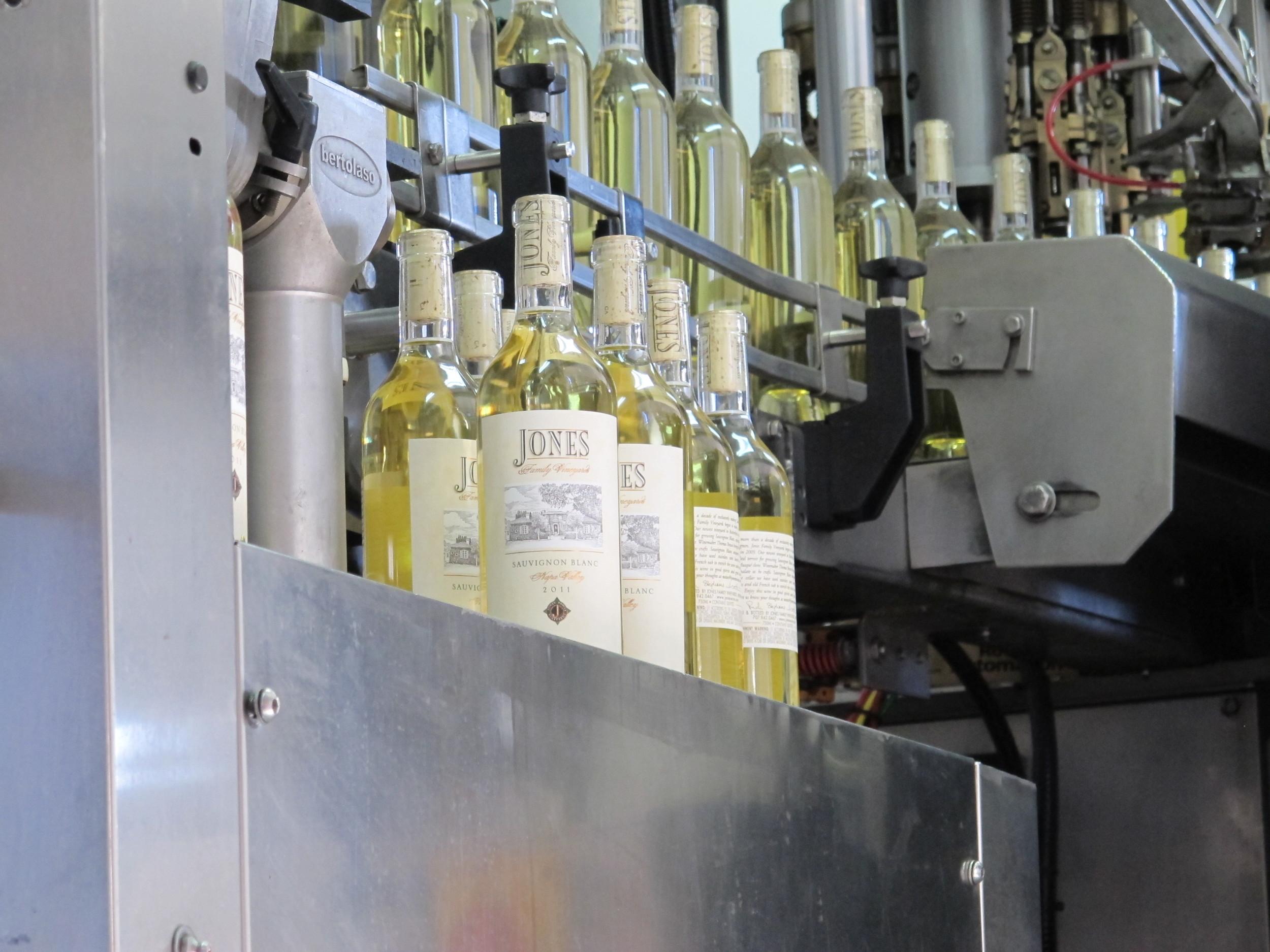 Bottling Sauvignon Blanc