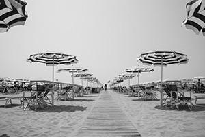 Black & White Umbrellas