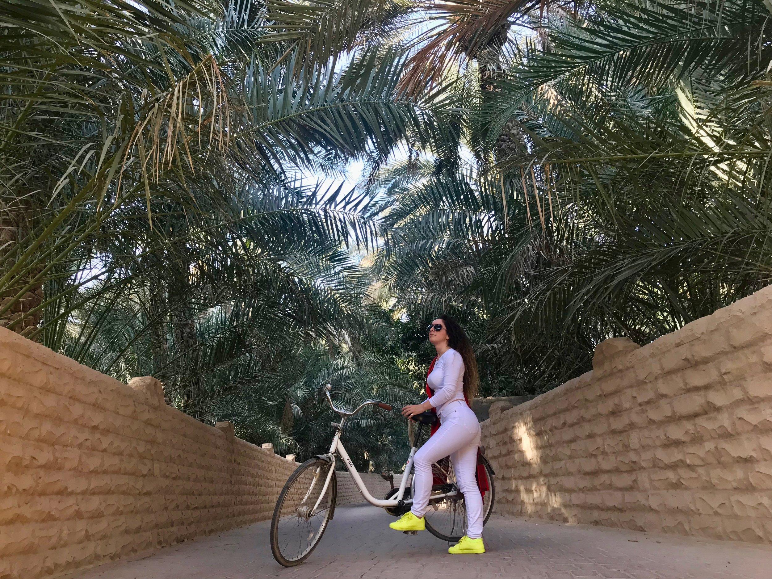 AL AIN OASIS • ABU DHABI, UAE PHOTOGRAPHER: [Í]