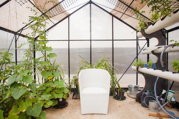 Blog-greenhouse.jpg