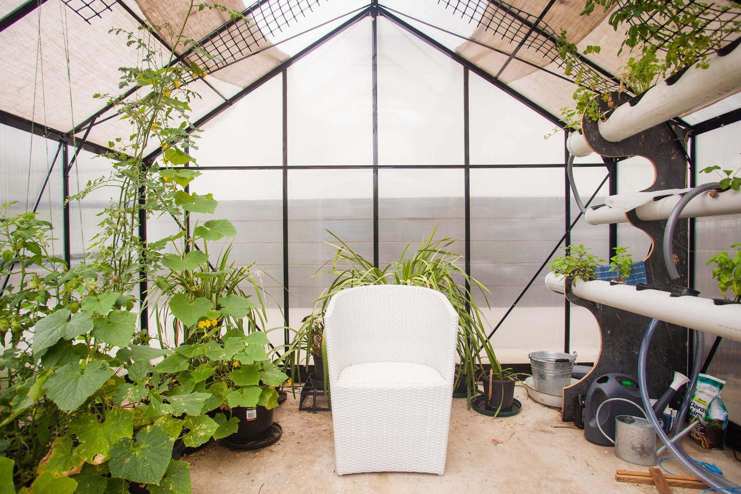 A look inside our lovely big greenhouse, which is now full of fresh cucumbers, tomatoes and herbs