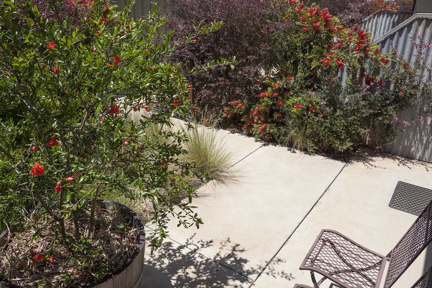 One of a Kind Apartments garden2.jpg