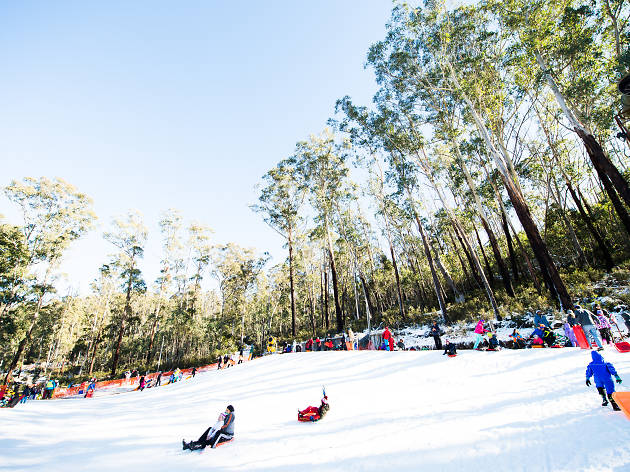 Image from:  https://www.timeout.com/sydney/travel/corin-forest-mountain-resort