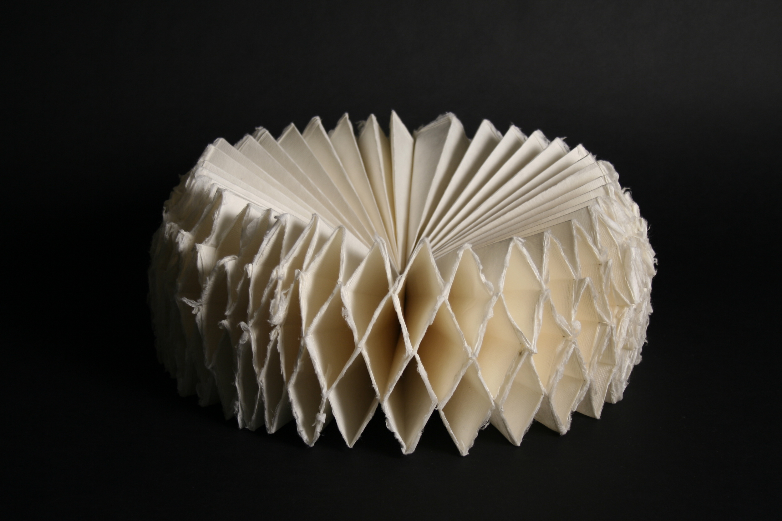 jane herro, 2009  japanese mulberry paper, sterling silver